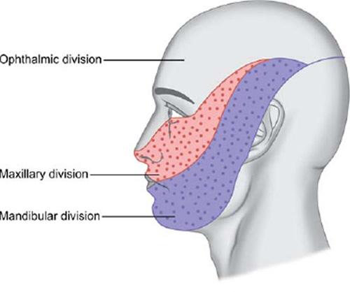 occipital neuralgia acid reflux