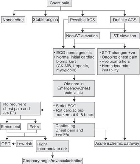 non st elevation acute coronary syndrome guidelines. esc 2015